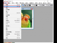 Corel Painter 12快速将照片制作成水彩画的方法